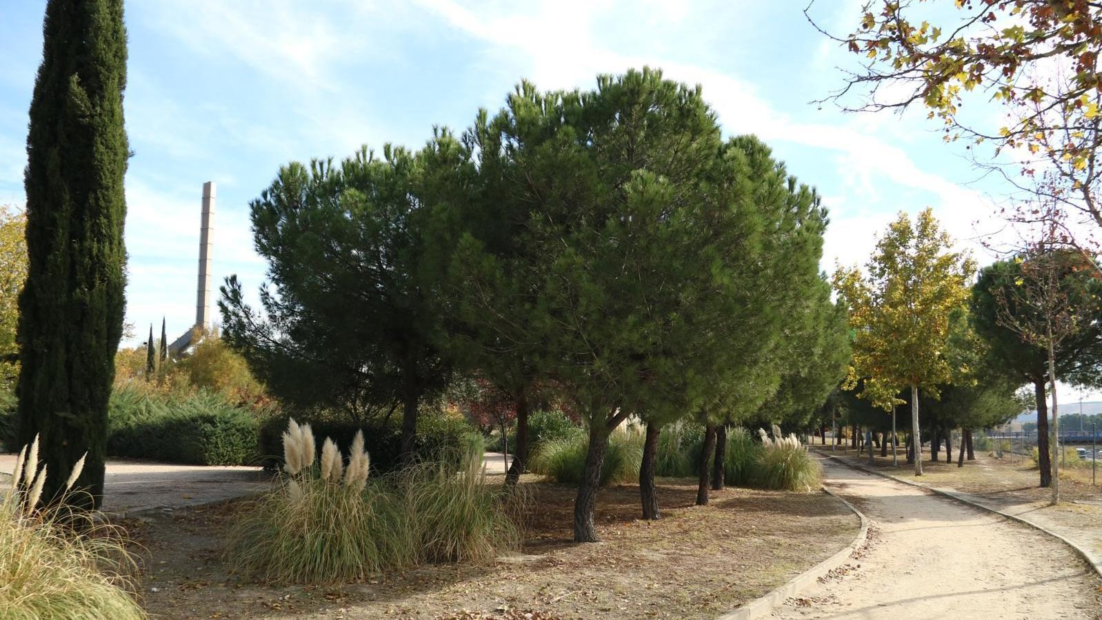 Nuevo parque de referencia en Rivas-Vaciamadrid